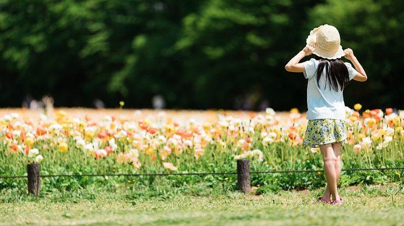 花畑と帽子をかぶった女の子