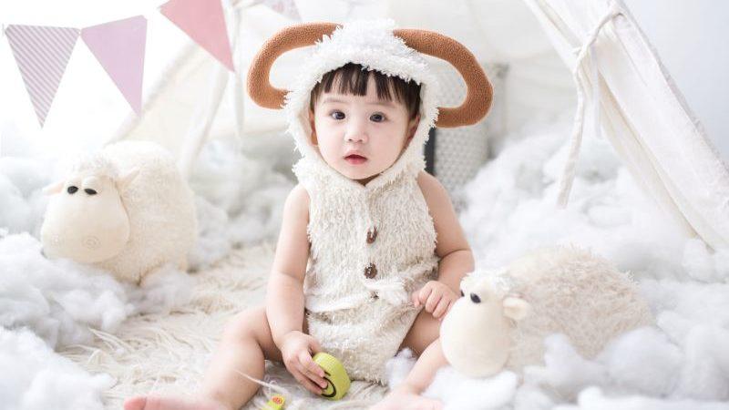 羊の着ぐるみ赤ちゃん